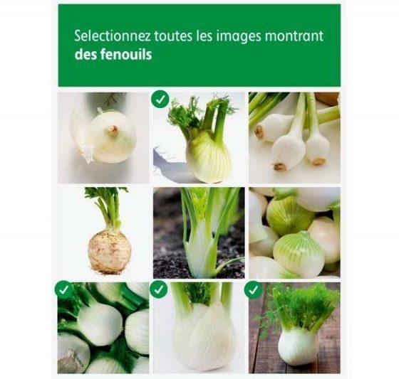 Intermarché légumes